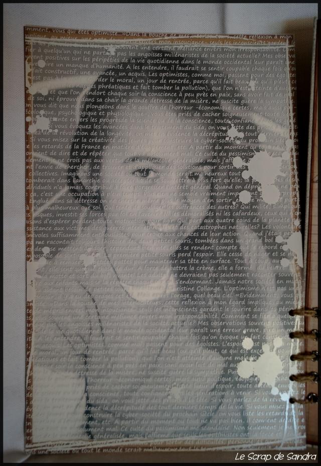Portrait (11)